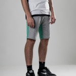 MANTRA Jogg Shorts | Mint-Grey